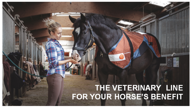 BEMER Veterinary Line – The New Face of Healthy Choice